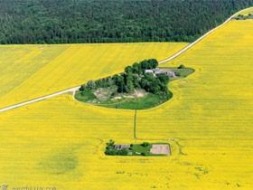 你造吗?白俄罗斯风景也这么美丽