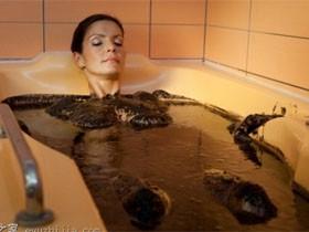 阿塞拜疆石油浴吸引大量独联体国家游客