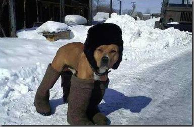 俄罗斯城市-皮亚季戈尔斯克 冬天保证冻成狗