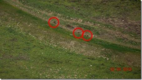 亚美尼亚和阿塞拜疆飞地纳卡冲突的最新照片